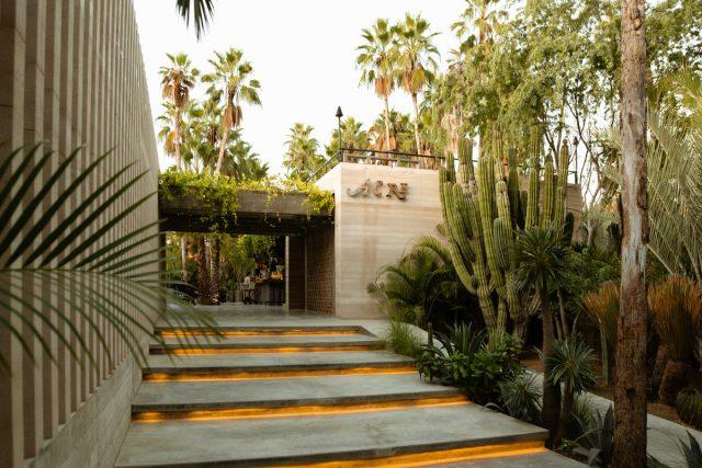 Abre en Los Cabos un hotel con caras habitaciones en un árbol